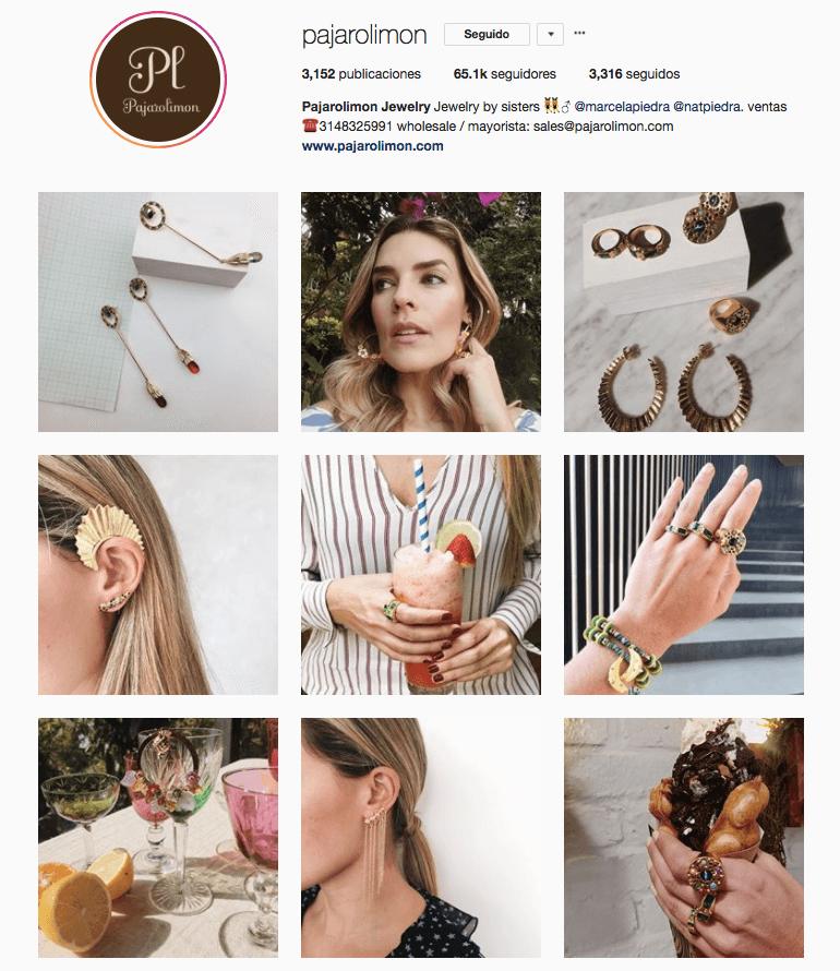 Cómo publicar en Instagram-marketiniana-PAJAROLIMON